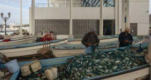 سوق مطرح للأسماك في سلطنة عمان على قائمة المشاريع المرشحة لجائزة الآغا خان للعمارة 2019