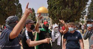 لدعم صمود الشعب الفلسطيني طائرات الجيش تنقل مساعدات مغربية عاجلة
